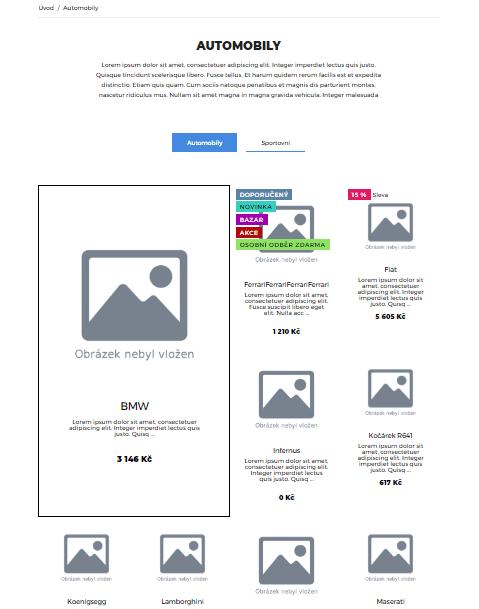 šablona e-shopu